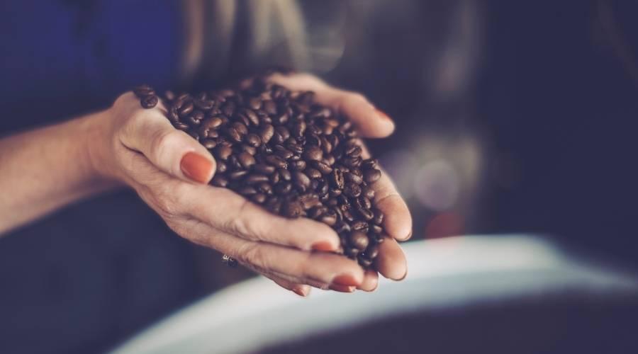 roasting coffee beans with a heat gun